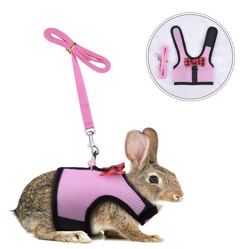 Rabbit Kitten Harness Cat Leash - Bunny Soft Nylon,Running,Walking Jogging Harness Leash with Safe Bell for Ferret and Other Small Pet Animals